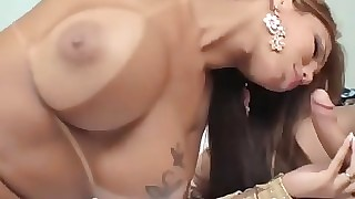 Latina T-Girls Increased by A Beggar