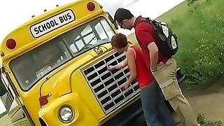 Omnibus School